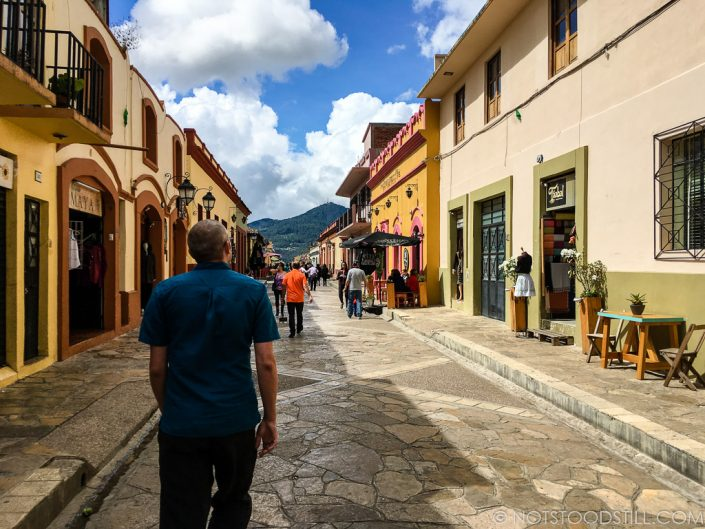 Real de Guadalupe, a pedestrianised street filled with shops and restaurants and cafes.