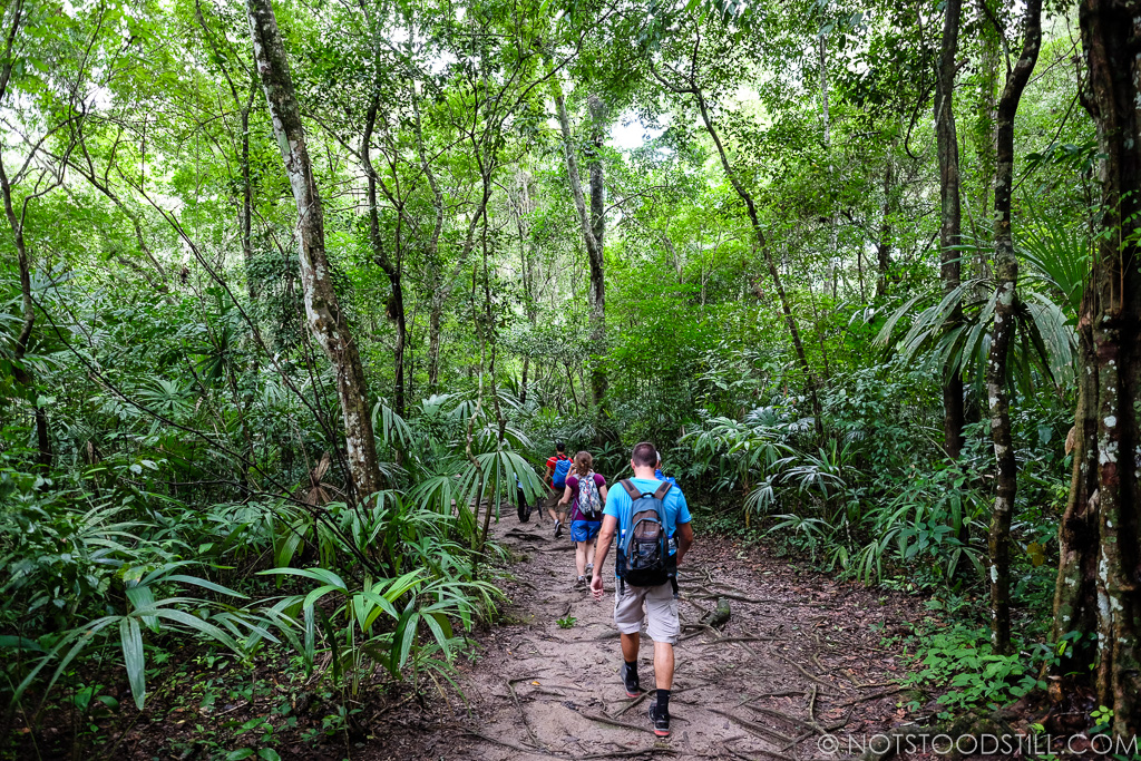 Hiking through the jungle paths to get between temples.