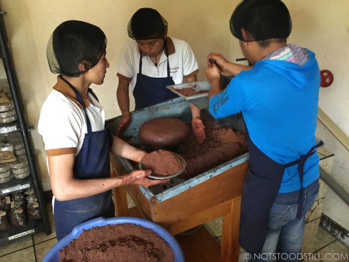 Guys hard at work making cocoa butter, the basis of chocolate.