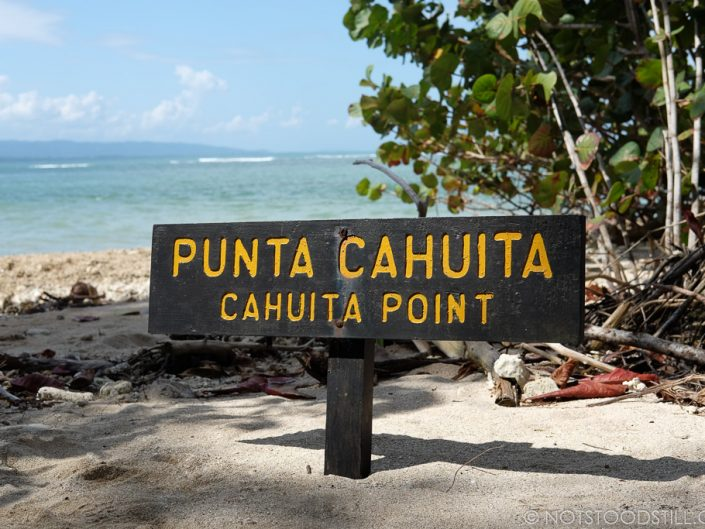 The mid point of the Cahuita National Park trail.