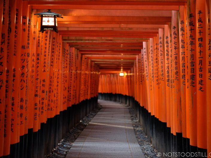 Fushimi Inari Shrine, set amongst a mountain, the trails are lined with multiple arches